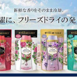 【補充包】日本寶潔 P&G 衣物芳香顆粒 430ml~香氣持續12週 高濃縮香精油 消臭去汗味